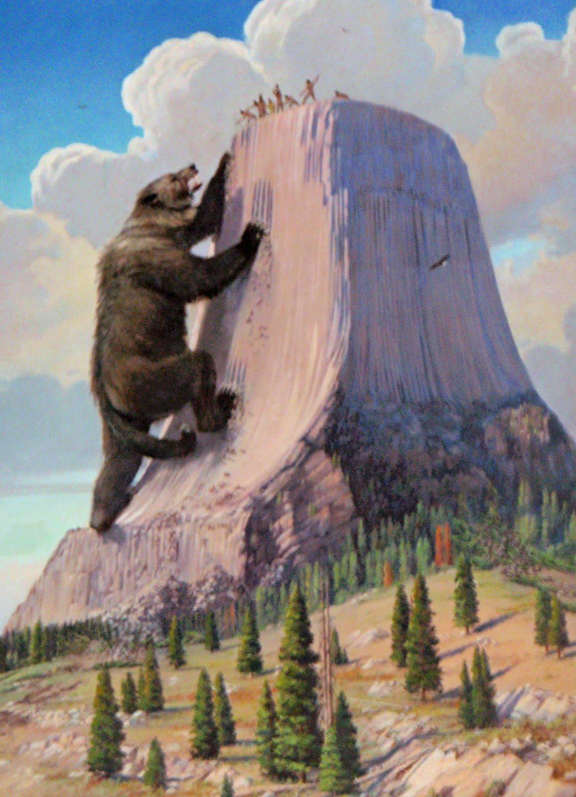 Moose Droppings Devils Tower Wyoming