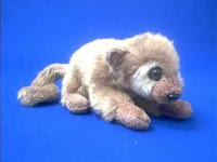 kinkajou plush stuffed animal toy