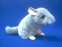 chinchilla plush stuffed animal toy