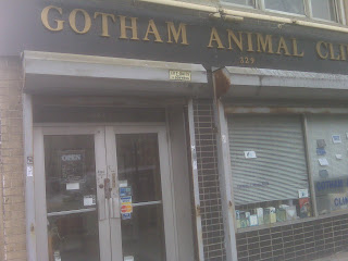 Gotham Animal Clinic, Gramercy Park, NYC