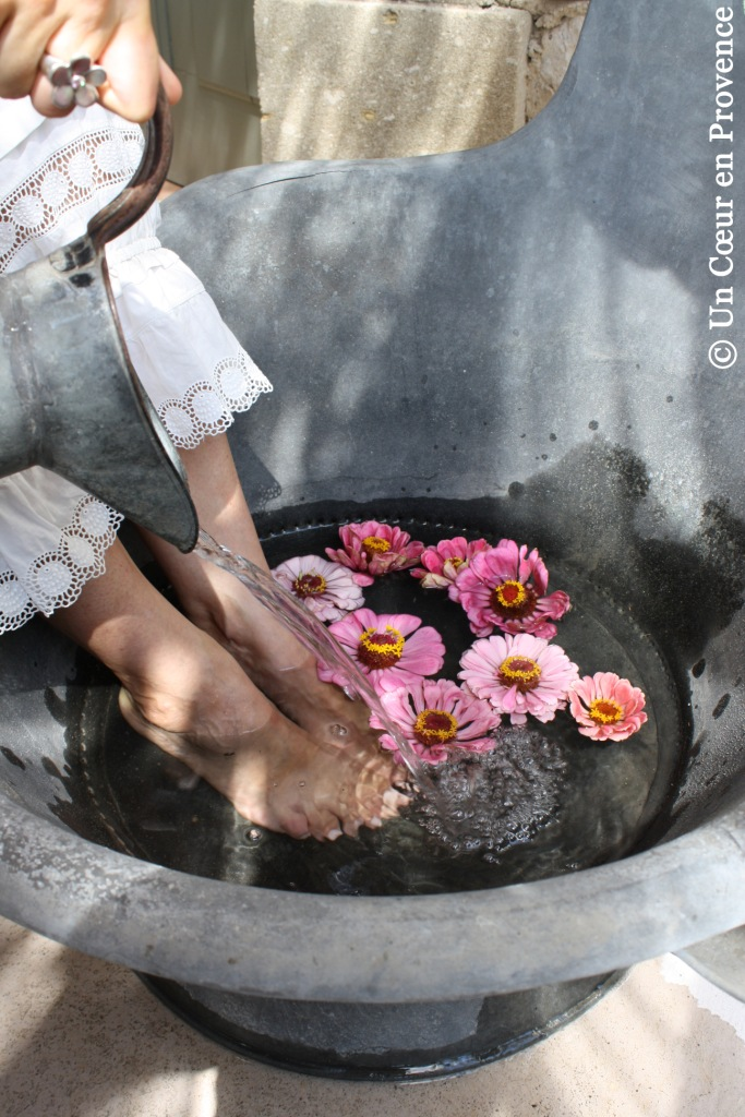 Feet in water and Zinnias