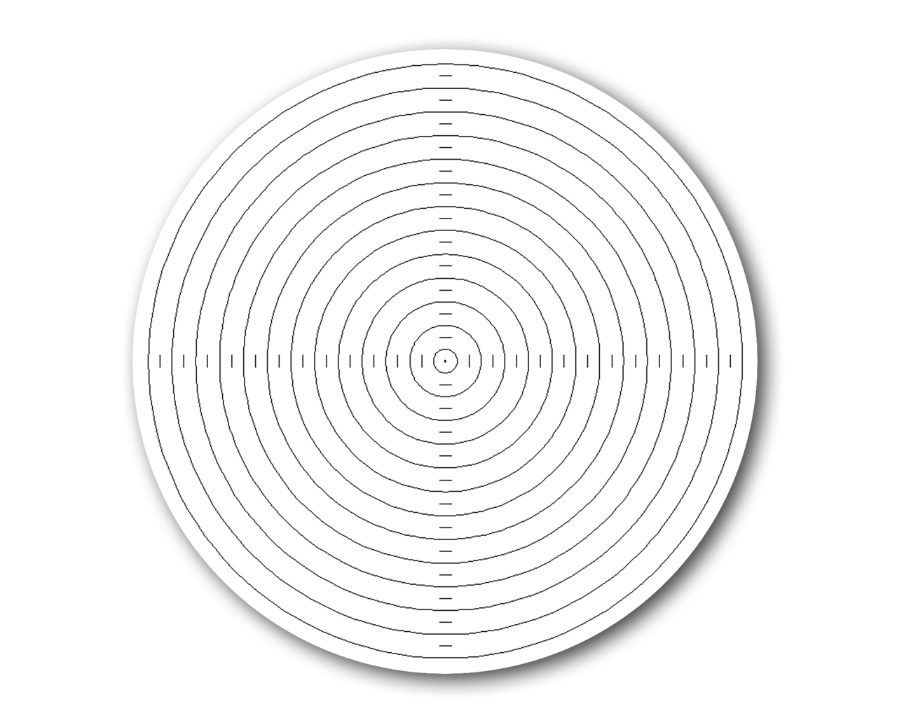 Zoe Strauss: Concentric Circles
