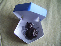 Harry Potter chocolate frog in box