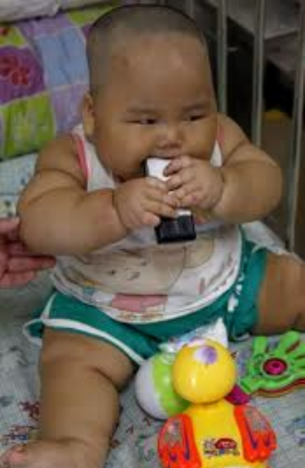 Fattest Baby Ever : fattest, Sydney, HISTORY!!