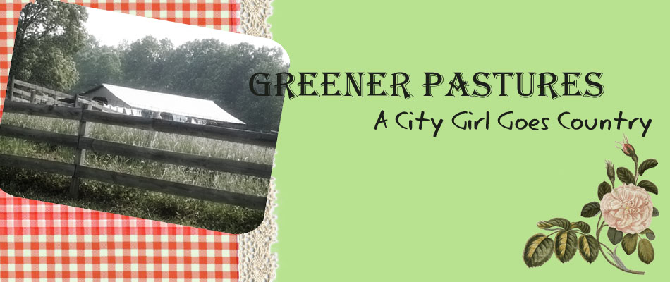 Greener Pastures--A City Girl Goes Country... and goes back again
