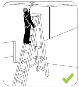 Workplace Safety and Health: Ladder Safety