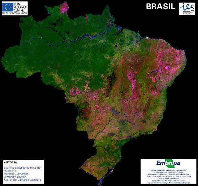 Amazonia cobertura vegetal