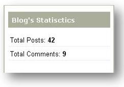 blog-statistics-widget