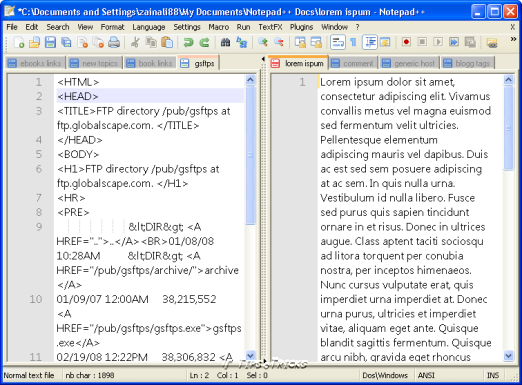 Multi-tabbed view of a text editor
