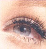 Silk Lashes Extension