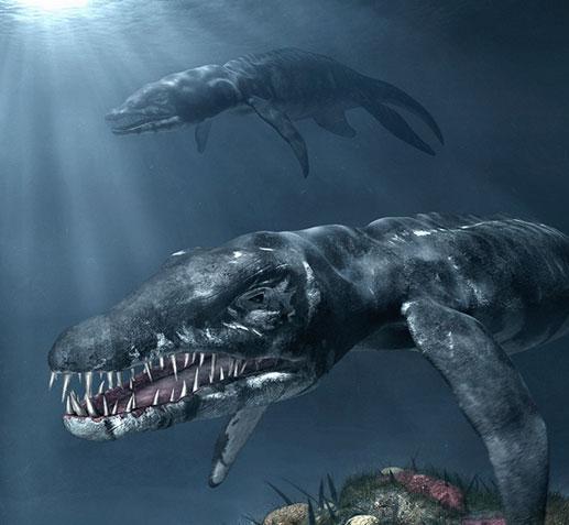 Gambar Dinosaurus Yang Belum Diwarnai