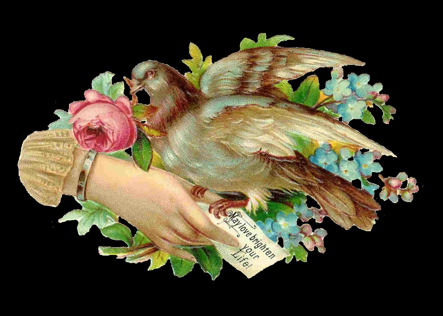 Своими руками, открытка с юбилеем с голубями