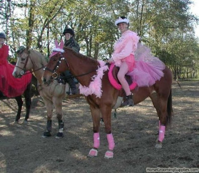 horse fancy dress