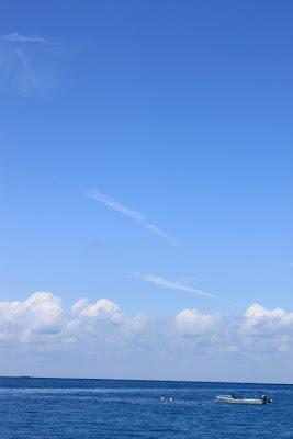 3c23bbe2da I lean against the wind. Pretend that I am weightless.