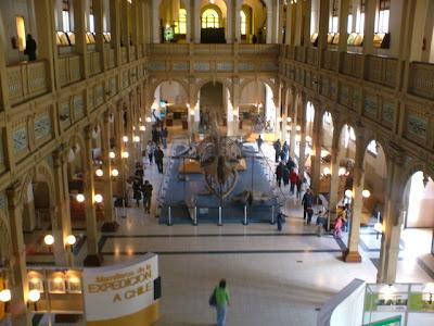 Museu de História Natural, Santiago, Chile