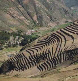 Civilizacion Inca Agricultura Incaica