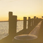 View From Staten Island Pier