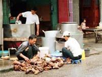 cat meat preparation