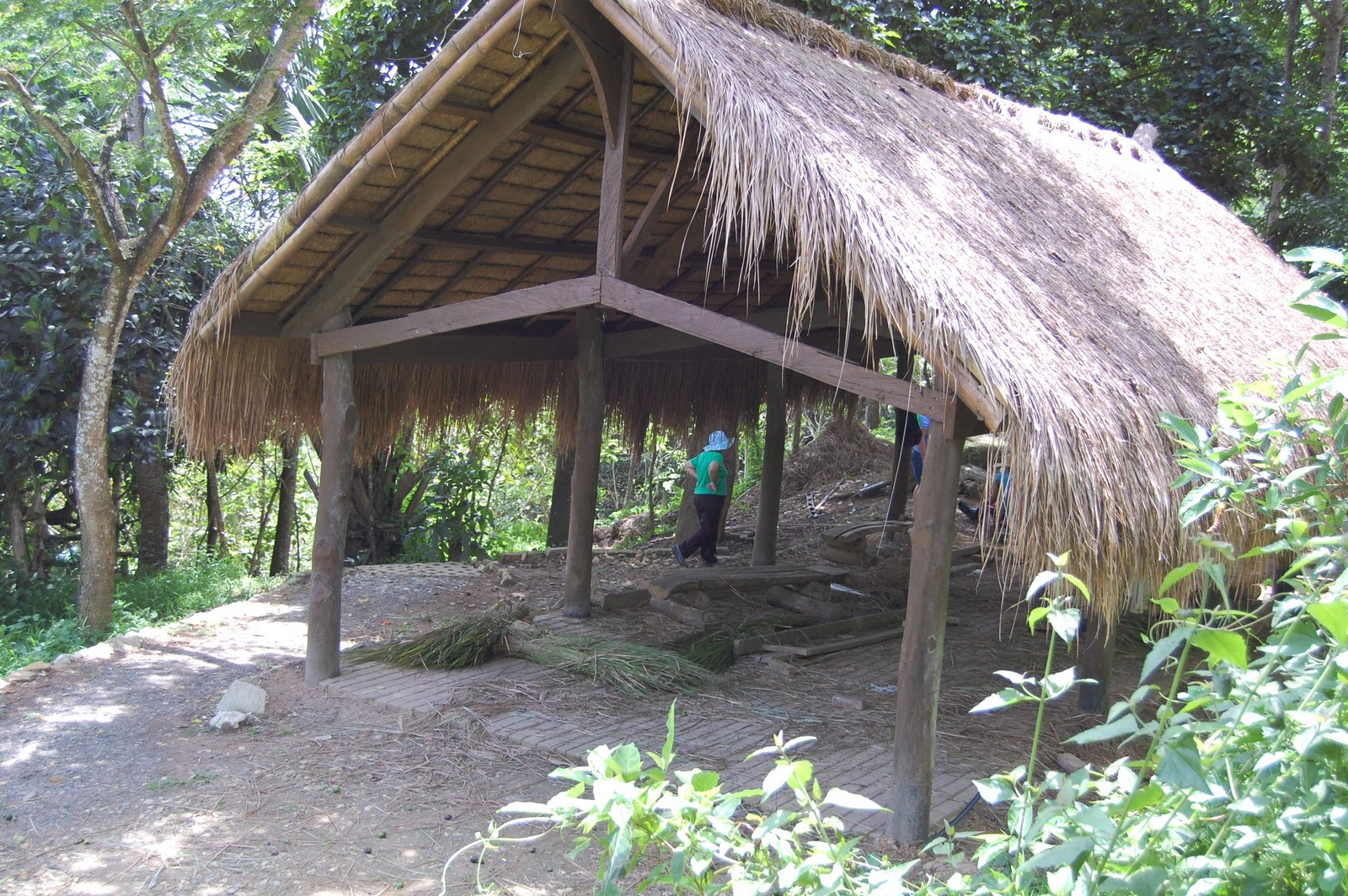 Adventures In Sustainability Making Cogon Grass Roofing