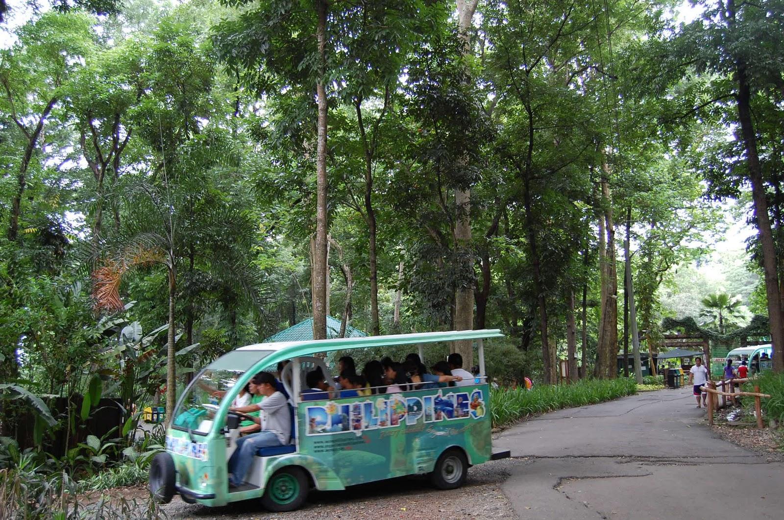 Adventures In Sustainability La Mesa Eco Park Quezon City