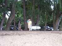 Hanalei Beach Kauai Hawaii