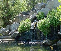 Morrison Knudson Nature Center Boise Idaho