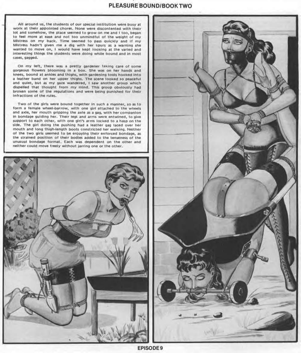 Pleasure Bound Comic Book - Mega Porn Pics-3643