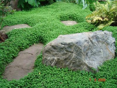 evolution du jardin japonais. Black Bedroom Furniture Sets. Home Design Ideas