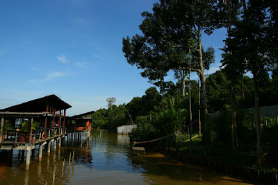 View at Orang Utan Island at Bukit Merah