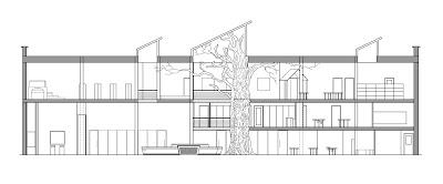 tree trunk diagram tree layers diagram wiring diagram