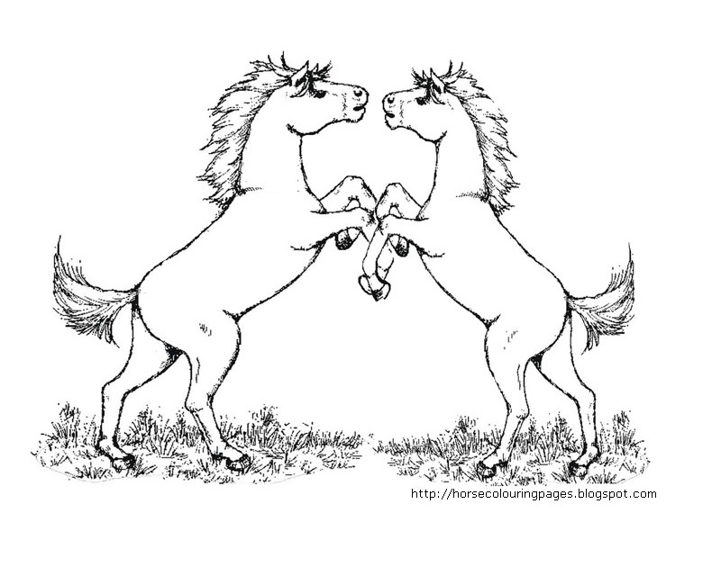 Free Fighting Horse Coloring Pages | Coloring Pages