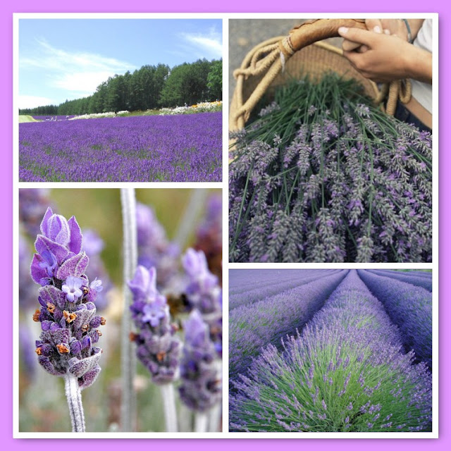 Lavender Bath Salts, Tuesday Tune, Natasha in Oz, Lavender image