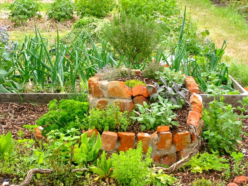 Spindlebrook • No-dig • Market Garden: A Permaculture