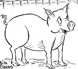 lovable liberal: Who's the pig here?