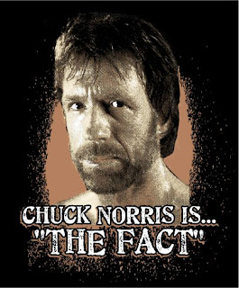 CHUCK NORRIS FACTS!!!!!