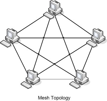 Informatics Management: Computer Network Topology