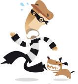 Blog Hırsızlarına Karşı!