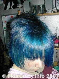 Emo Blog Food Coloring Temporary Hair Dye
