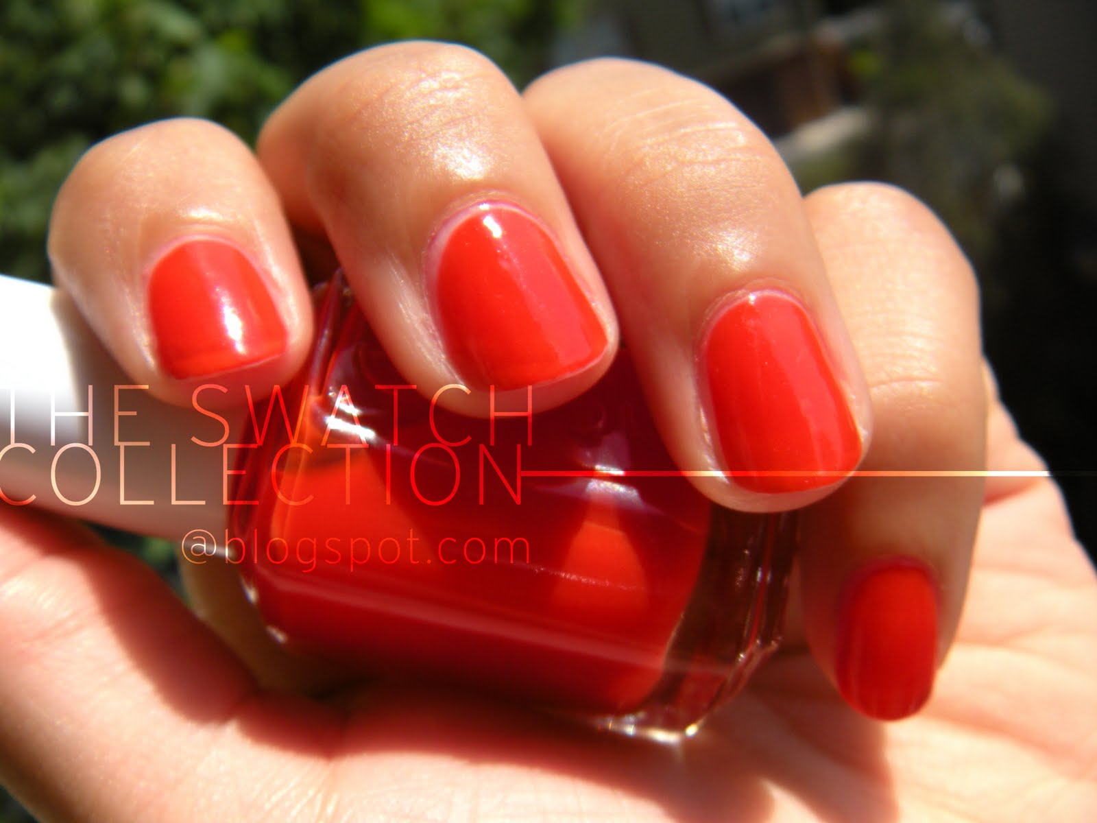 Essie Clambake the swatch coll...
