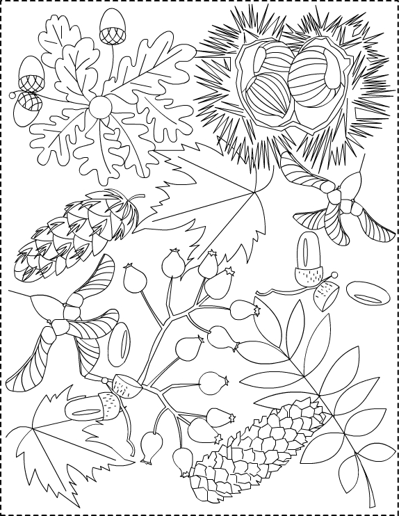 autumn coloring book pages | Nicole's Free Coloring Pages: Autumn coloring pages