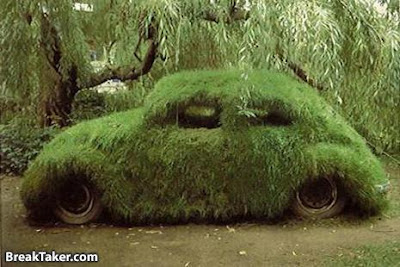 15 Cool Grass Covered Cars (16) 14