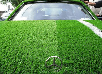 15 Cool Grass Covered Cars (16) 9