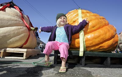 1,524-Pound Pumpkin Worth $9,144