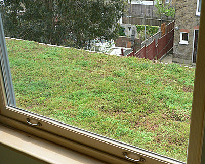Cool and Creative Green Roofs (21)  3