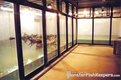 Aquariums That Are Definitely Worth A Second Glance