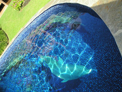 Changing The Look Of Swimming Pool 3D Ceramic Tile Art (11) 4