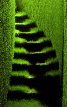Cool and Creative Grass Creations (25) 11