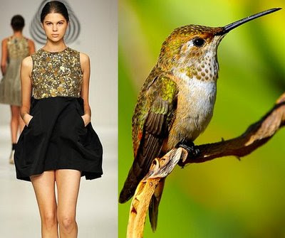 Fashion Dresses - Hummingbird Theme (9) 2