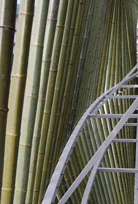 Bamboo Forest House (5) 5