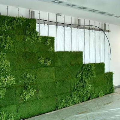 Green wall - Indoor Landscaping (5) 3